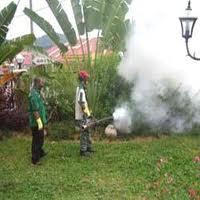 Order Mosquito control