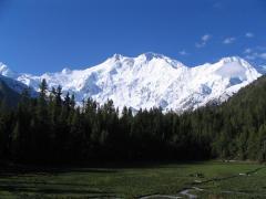 Fairy Meadows Nanga Parbat Trek.