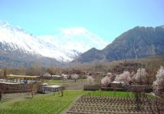 Hunza cherry blossom tour