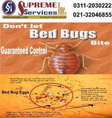 Bed Bugs (Khatmal) Control Services