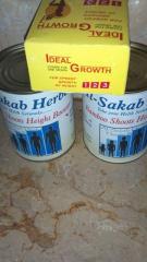 Al-Sakab Bamboo Shoots Height Growth