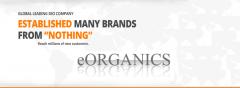 Affordable SEO Services and Social Media Marketing Company