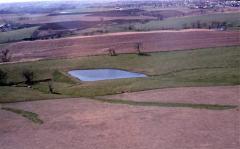 Rental of farmland