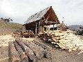 Export of wood materials
